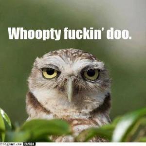 Sarcastic Owl